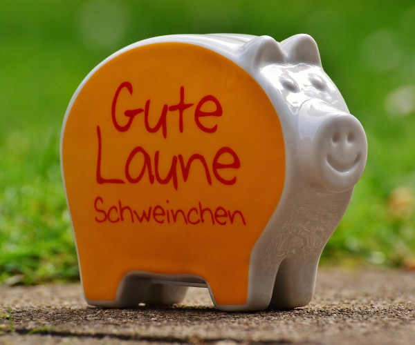 was-wir-kosten-piggy-bank-1429575_1920.jpg